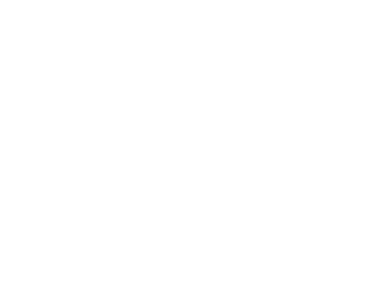 Wolfi Tattoo Artist